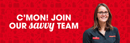 Join our savvy team